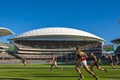 Adelaide Oval Redevelopment project by Fabritecture.