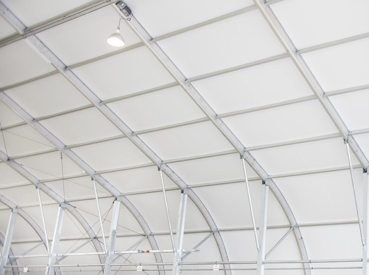 12427, Virgin Hangar, PVC, 2013, FS 6 lo res